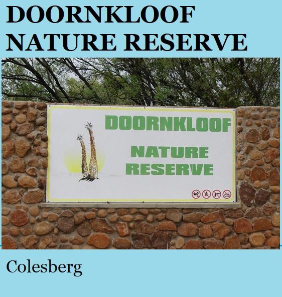 Doornkloof Nature Reserve - Colesberg