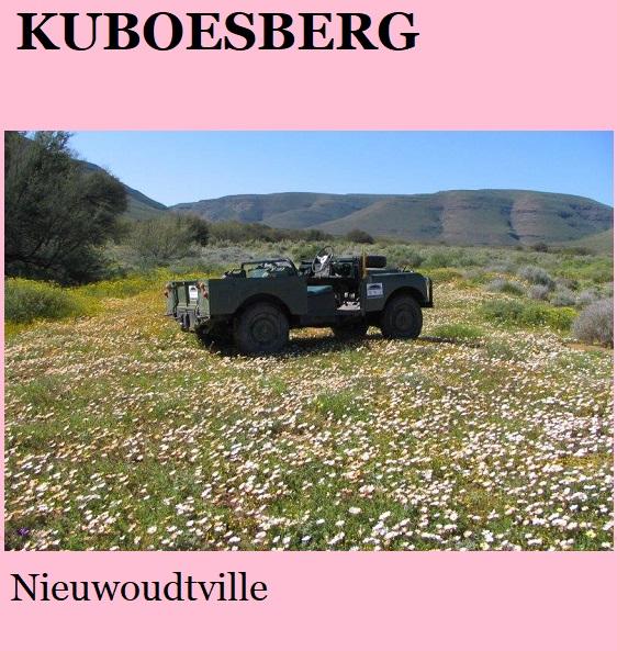 Kuboesberg-Flowers - Nieuwoudtville