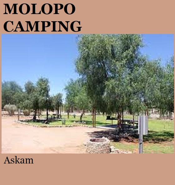 Molopo Camping - Askam