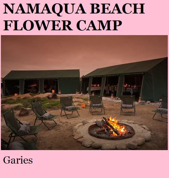 Namaqua Beach Flower Camp - Garies