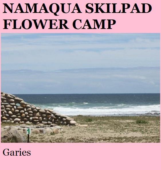 Namaqua Skilpad Flower Camp
