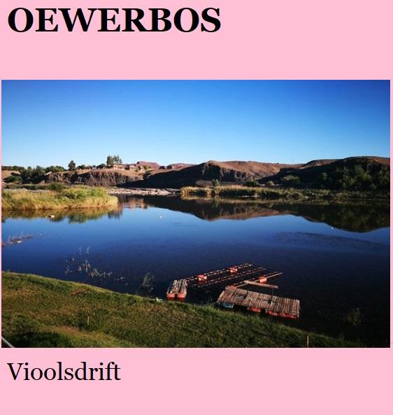 Oewerbos - Vioolsdrift