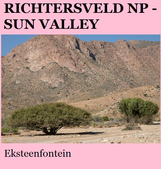 Richtersveld Sun Valley - Eksteenfontein