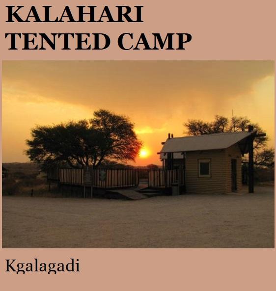 Kalahari Tented Camp - Kgalagadi