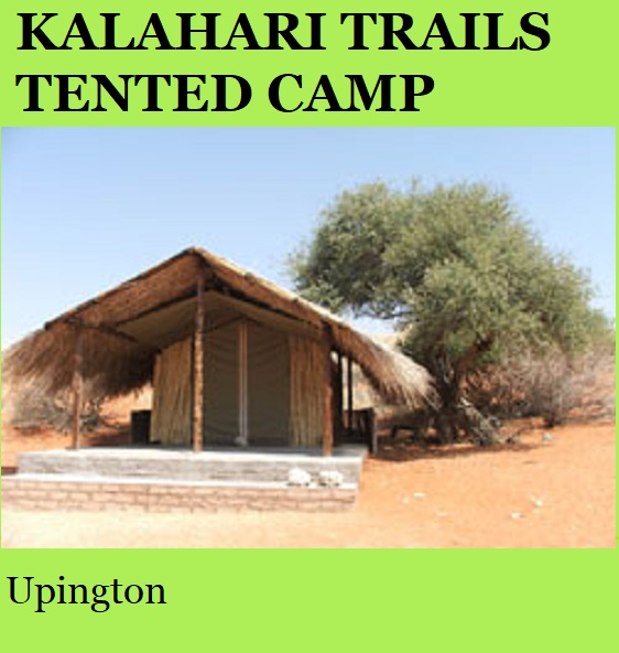 Kalahari Trails Tented Camp- Upington