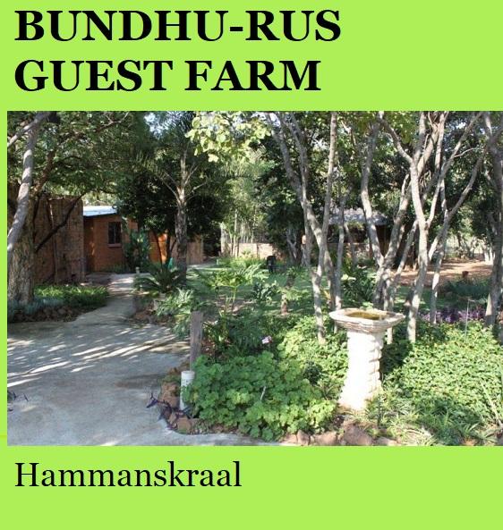 Bundhu-Rus Guest Farm - Hammanskraal