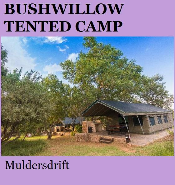 Bushwillow Tented Camp - Muldersdrift