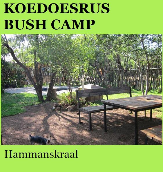 Koedoesrus Bush Camp - Hammanskraal
