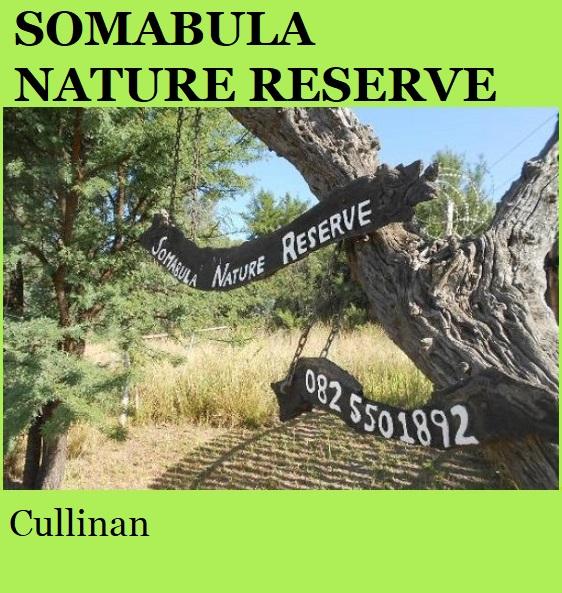Somabula Nature Reserve - Cullinan
