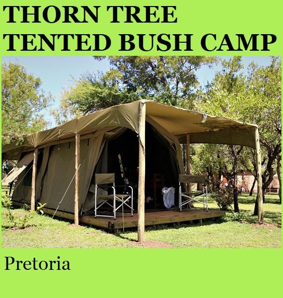 Thorn Tree Tented Bush Camp - Pretoria