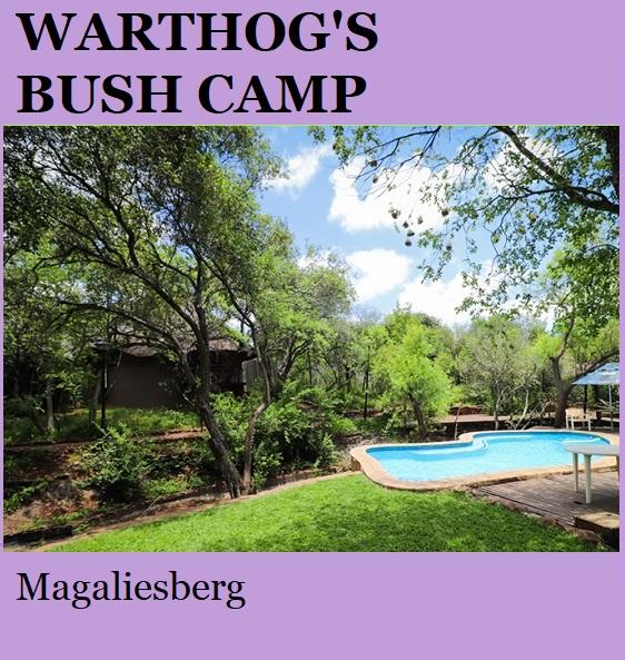 Warthogs Bush Camp - Magaliesberg