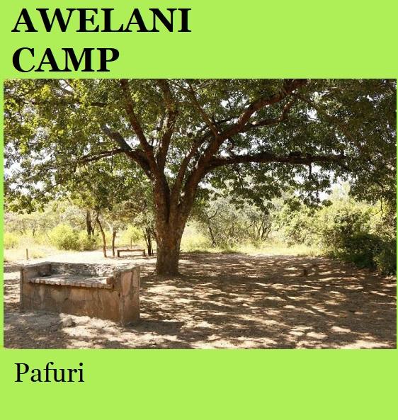 Awelani Camp - Pafuri
