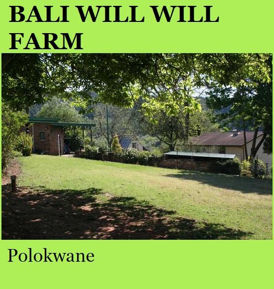 Bali Will Will Farm - Polokwane