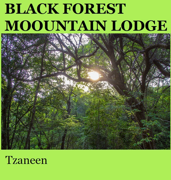 Black Forest Mountain Lodge - Tzaneen