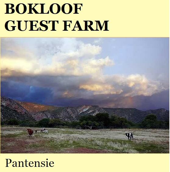 Bokloof Guest Farm - Patensie