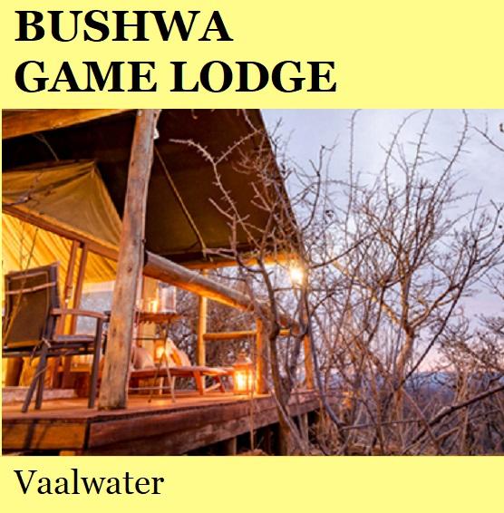 Bushwa Game Lodge - Vaalwater