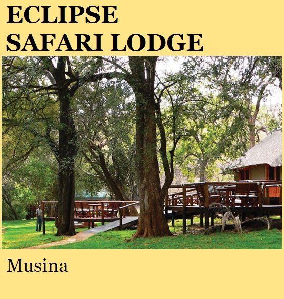 Eclipse Safari Lodge - Musina