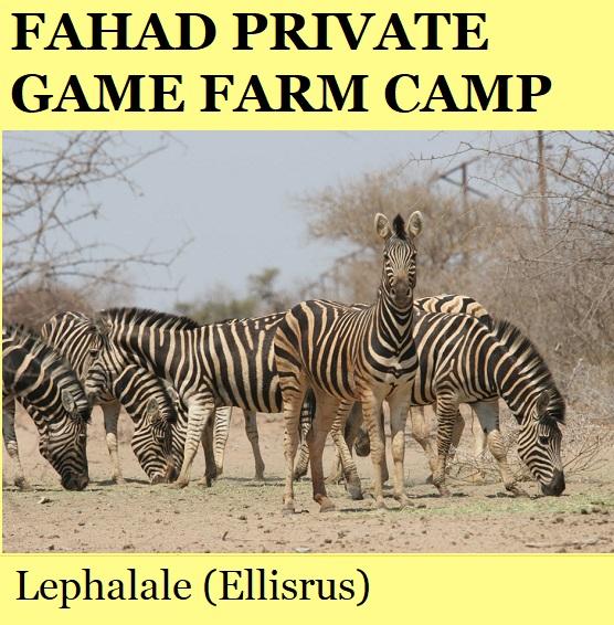 Fahad Private Game Farm - Fish Eagle Camp - Lephalale (Ellisrus)