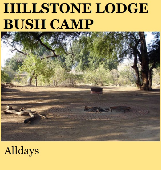 Hillstone Lodge Bush Camp - Alldays