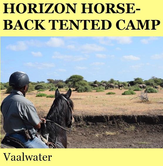 Horizon Horseback Tented Camp - Vaalwater