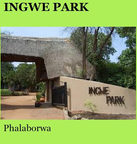 Ingwe Park - Phalaborwa