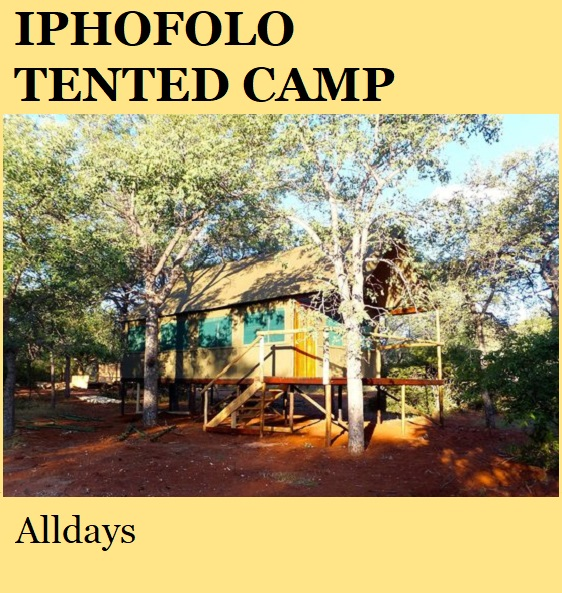 Iphofolo Tented Camp - Alldays