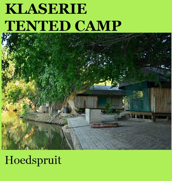 Klaserie Tented Camp - Hoedspruit