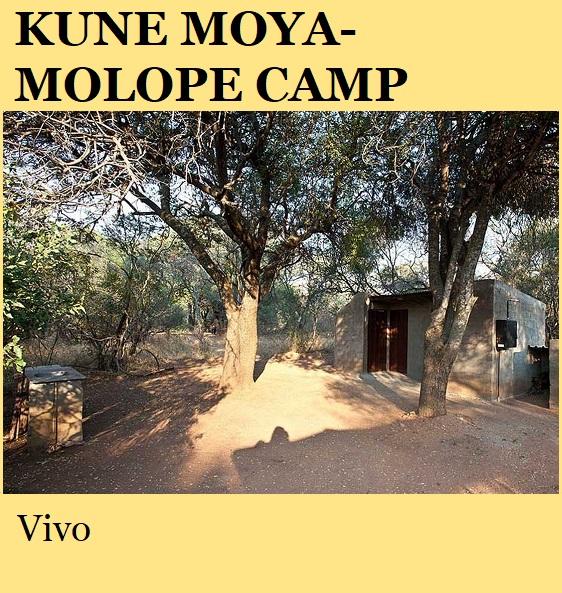 Kune Moya Molope Camp - Vivo