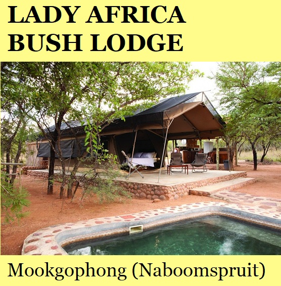 Lady Africa Bush Lodge - Mookgophong (Naboomspruit)