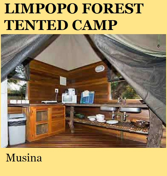 Limpopo Forest Tented Camp - Musina