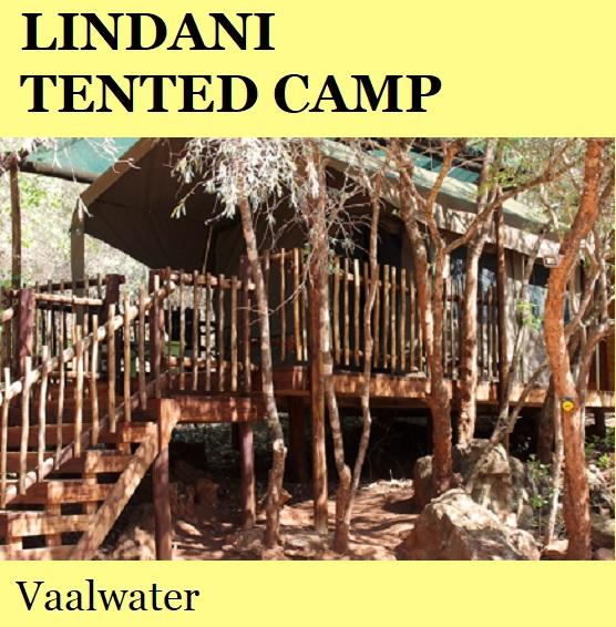 Lindani Tented Camp - Vaalwater