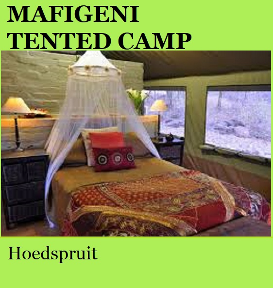Mafigeni Tented Camp - Hoedspruit