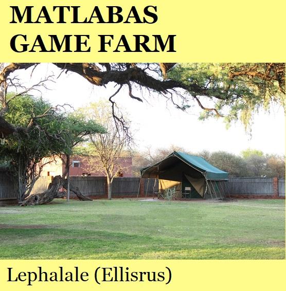 Matlabas Game Farm - Lephalale (Ellisrus)