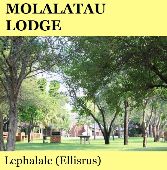 Molalatau Lodge - Lephalale (Ellisrus)