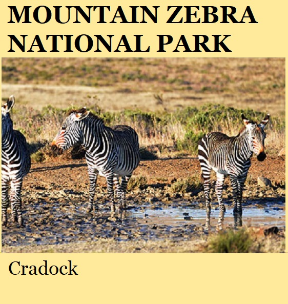 Mountain Zebra National Park - Cradock