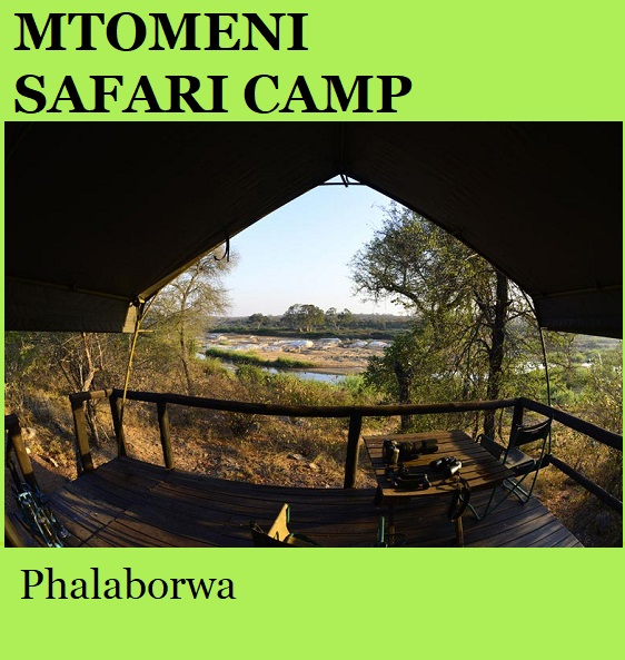 Mtomeni Safari Camp - Phalaborwa