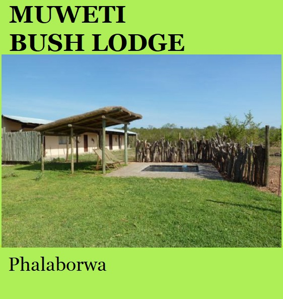 Muweti Bush Lodge - Phalaborwa