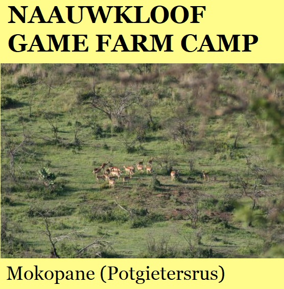 Naauwkloof Game Farm Camp - Mokopane (Potgietersrus)