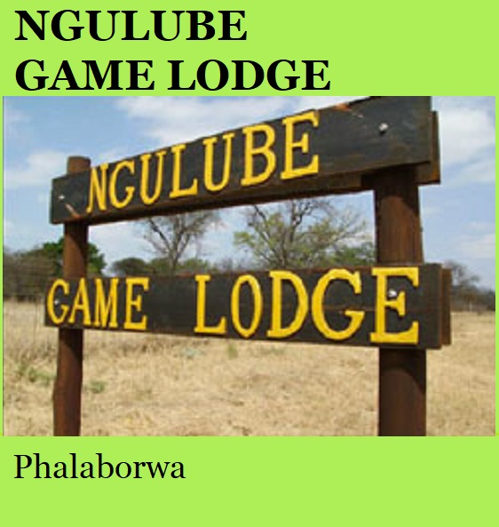 Ngulube Game Lodge - Phalaborwa