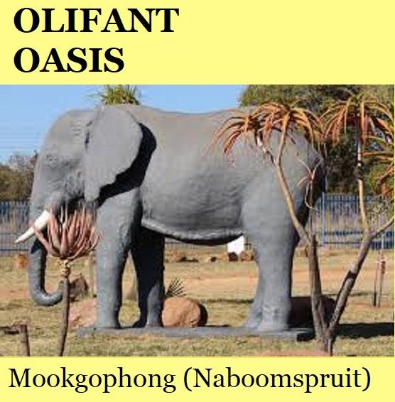 Olifant Oasis - Mookgophong (Naboomspruit)