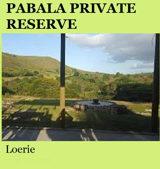 Pabala Private Reserve - Loerie