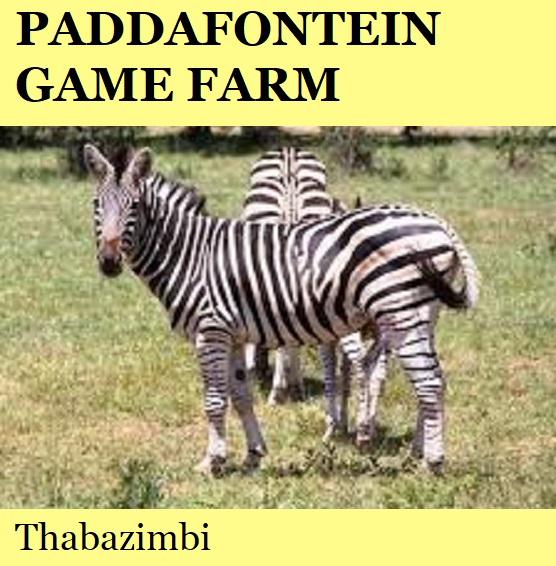 Paddafontein Game Farm - Thabazimbi