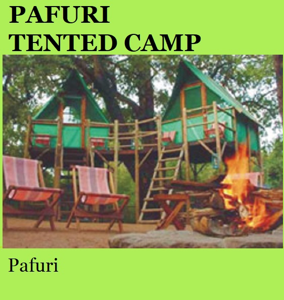 Pafuri Tented Camp - Pafuri
