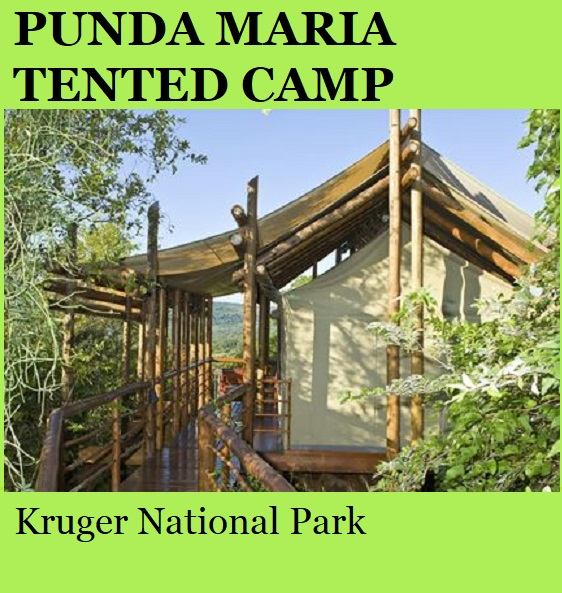 Punda Maria Tented Camp - Kruger National Park