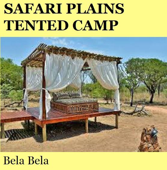 Safari Plains Tented Camp - Bela Bela