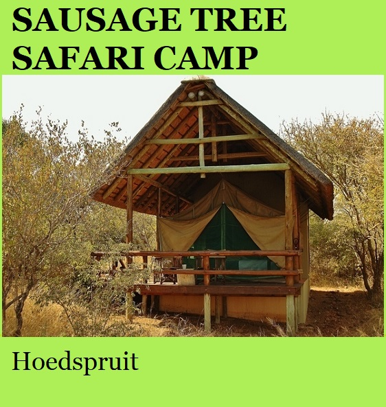 Sausage Tree Safari Camp - Hoedspruit