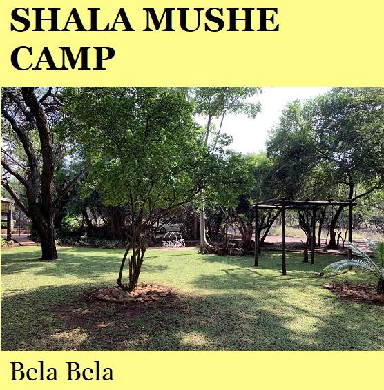 Shala Mushe Camp - Bela Bela