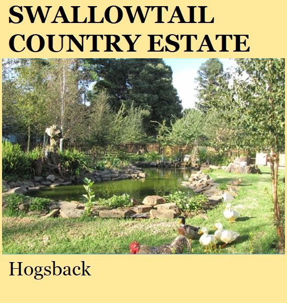 Swallowtail Country Estate - Hogsback