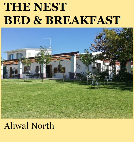 The Nest Bed and Breakfast - Aliwal North