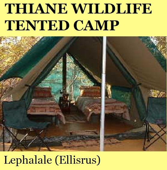Thiane Wildlife Sanctuary Tented Camp - Lephalale (Ellisrus)